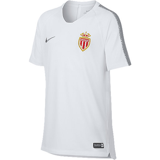 9dc1bf02ac85d Maillot de football enfant AS Monaco Multicolore 921154 NIKE